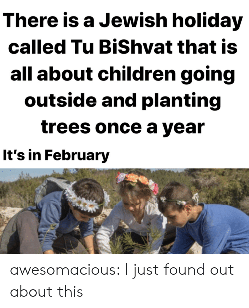 Jewish: There is a Jewish holiday  called Tu BiShvat that is  all about children going  outside and planting  trees once a year  It's in February awesomacious:  I just found out about this