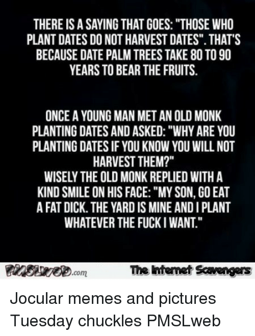 """Memes, Bear, and Date: THERE IS A SAYING THAT GOES: """"THOSE WHO  PLANT DATES DO NOT HARVEST DATES"""". THAT'S  BECAUSE DATE PALM TREES TAKE 80 TO 90  YEARS TO BEAR THE FRUITS  ONCE A YOUNG MAN MET AN OLD MONK  PLANTING DATES AND ASKED: """"WHY ARE YOU  PLANTING DATES IF YOU KNOW YOU WILL NOT  HARVEST THEM?""""  WISELY THE OLD MONK REPLIED WITH A  KIND SMILE ON HIS FACE:""""MY SON, GO EAT  A FAT DICK. THE YARD IS MINE AND I PLANT  WHATEVER THE FUCKI WANT.""""  The htenet Scavengars  com <p>Jocular memes and pictures  Tuesday chuckles  PMSLweb </p>"""