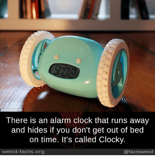 getting out of bed: There is an alarm clock that runs away  and hides if you don't get out of bed  on time. It's called Clocky  weird-facts.org  @facts weird