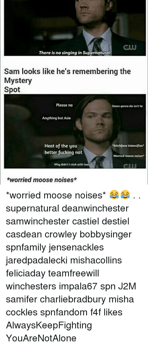 """Memes, Heat, and Mystery: There is no singing in Supernatural  Sam looks like he's remembering the  Mystery  Spot  Please no  Demons gonna die isnt he  Anything but Asia  Heat of the you  """"bitchface intensifies  better fucking not  Worried moose noises.  why didn'tI stich uith  *worried moose noises* *worried moose noises* 😂😂 . . supernatural deanwinchester samwinchester castiel destiel casdean crowley bobbysinger spnfamily jensenackles jaredpadalecki mishacollins feliciaday teamfreewill winchesters impala67 spn J2M samifer charliebradbury misha cockles spnfandom f4f likes AlwaysKeepFighting YouAreNotAlone"""