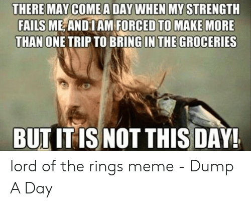 Funny Lord Of The Rings: THERE MAY COMEA DAY WHEN MY STRENGTH  FAILS ME AND IAM FORCED TO MAKE MORE  THAN ONE TRIP TO BRING IN THE GROCERIES  BUT IT IS NOT THIS DAY! lord of the rings meme - Dump A Day