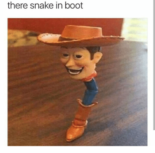 Snake: there snake in boot