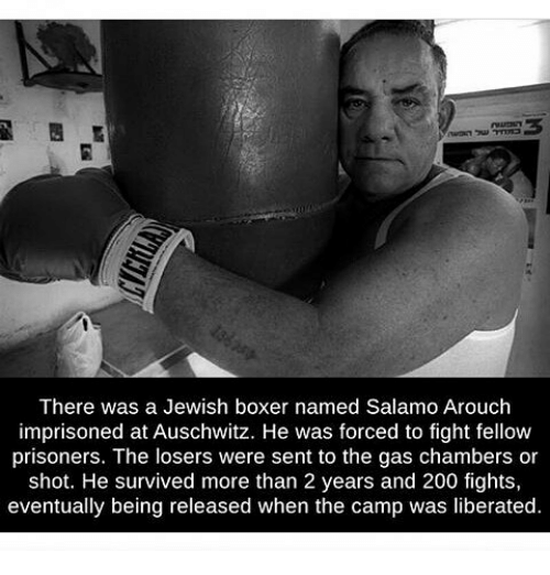 Memes, Auschwitz, and Boxer: There was a Jewish boxer named Salamo Arouch  imprisoned at Auschwitz. He was forced to fight fellow  prisoners. The losers were sent to the gas chambers or  shot. He survived more than 2 years and 200 fights,  eventually being released when the camp was liberated.