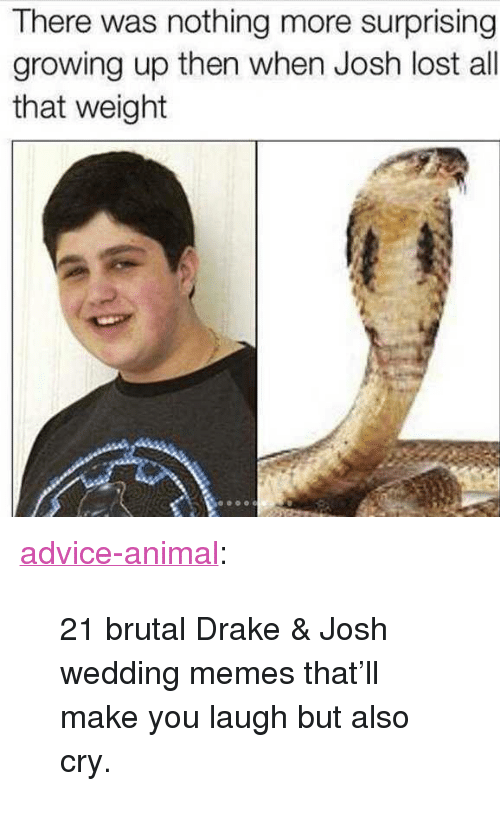 """Drake & Josh: There was nothing more surprising  growing up then when Josh lost all  that weight <p><a href=""""http://advice-animal.tumblr.com/post/162180097102/21-brutal-drake-josh-wedding-memes-thatll-make"""" class=""""tumblr_blog"""">advice-animal</a>:</p>  <blockquote><p>21 brutal Drake &amp; Josh wedding memes that'll make you laugh but also cry.</p></blockquote>"""