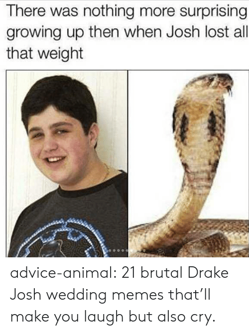Drake & Josh: There was nothing more surprising  growing up then when Josh lost all  that weight advice-animal:  21 brutal Drake  Josh wedding memes that'll make you laugh but also cry.