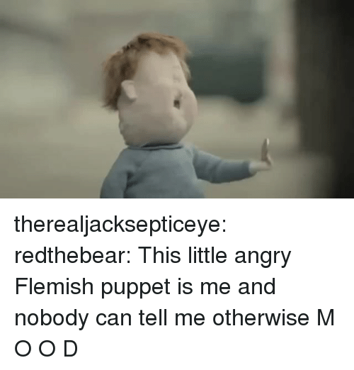 puppet: therealjacksepticeye: redthebear:    This little angry Flemish puppet is me and nobody can tell me otherwise  M O O D