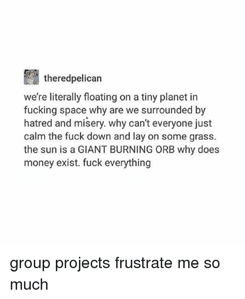 Fucking, Memes, and Money: thered pelican  we're literally floating on a tiny planet in  fucking space why are we surrounded by  hatred and misery. why can't everyone just  calm the fuck down and lay on some grass.  the sun is a GIANT BURNING ORB why does  money exist. fuck everything group projects frustrate me so much