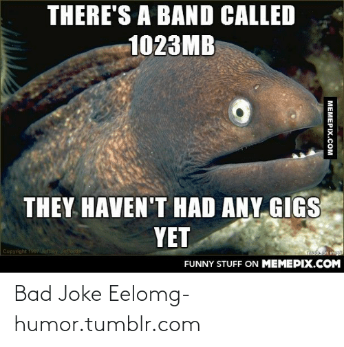 bad joke eel: THERE'S A BAND CALLED  1023MB  THEY HAVEN'T HAD ANY, GIGS  YET  Copyright 1997emey Jeffords  made on imguP  FUNNY STUFF ON MEMEPIX.COM  MEMEPIX.COM Bad Joke Eelomg-humor.tumblr.com