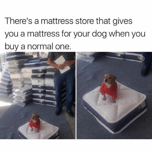 There 39 s a mattress store that gives you a mattress for for When to buy a mattress