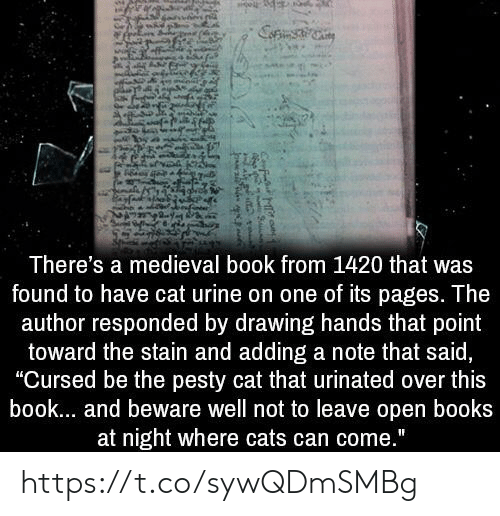 """cat urine: There's a medieval book from 1420 that was  found to have cat urine on one of its pages. The  author responded by drawing hands that point  toward the stain and adding a note that said,  """"Cursed be the pesty cat that urinated over this  book... and beware well not to leave open books  at night where cats can come."""" https://t.co/sywQDmSMBg"""