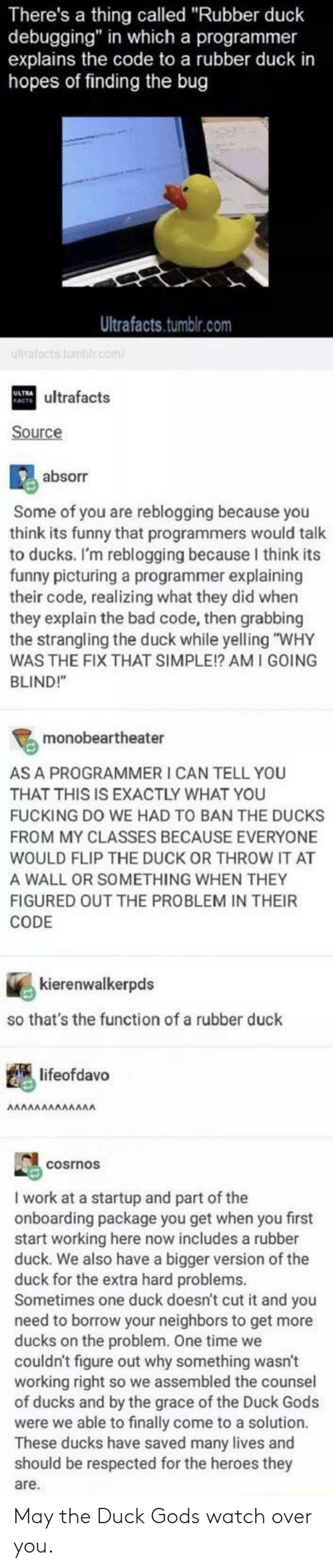 """The Duck: There's a thing called """"Rubber duck  debugging"""" in which a programmer  explains the code to a rubber duck in  hopes of finding the bug  Ultrafacts.tumblr.com  ultrafacts tmblr.com  ATultrafacts  Source  absorr  Some of you are reblogging because you  think its funny that programmers would talk  to ducks. I'm reblogging because I think its  funny picturing a programmer explaining  their code, realizing what they did when  they explain the bad code, then grabbing  the strangling the duck while yelling """"WHY  WAS THE FIX THAT SIMPLE!? AM I GOING  BLIND!""""  monobeartheater  AS A PROGRAMMER I CAN TELL YOU  THAT THIS IS EXACTLY WHAT YOU  FUCKING DO WE HAD TO BAN THE DUCKS  FROM MY CLASSES BECAUSE EVERYONE  WOULD FLIP THE DUCK OR THROW IT AT  A WALL OR SOMETHING WHEN THEY  FIGURED OUT THE PROBLEM IN THEIR  CODE  kierenwalkerpds  so that's the function of a rubber duck  lifeofdavo  ΑΛΛΛΛΛΛΛΛΛΛΑ  cosrnos  work at a startup and part of the  onboarding package you get when you first  start working here now includes a rubber  duck. We also have a bigger version of the  duck for the extra hard problems.  Sometimes one duck doesn't cut it and you  need to borrow your neighbors to get more  ducks on the problem. One time we  couldn't figure out why something wasn't  working right so we assembled the counsel  of ducks and by the grace of the Duck Gods  were we able to finally come to a solution.  These ducks have saved many lives and  should be respected for the heroes they  are. May the Duck Gods watch over you."""