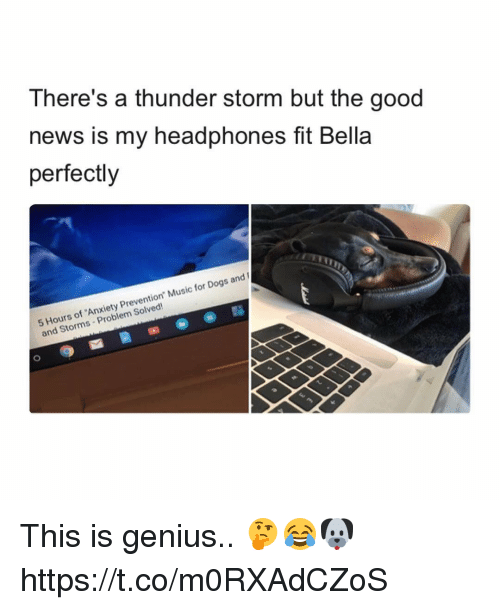 "Dogs, Music, and News: There's a thunder storm but the good  news is my headphones fit Bella  perfectly  Hours of 'Anxiety Prevention"" Music for Dogs and  and Storms Problem Solved! This is genius.. 🤔😂🐶 https://t.co/m0RXAdCZoS"