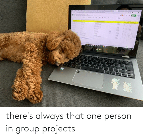 Group Projects: there's always that one person in group projects