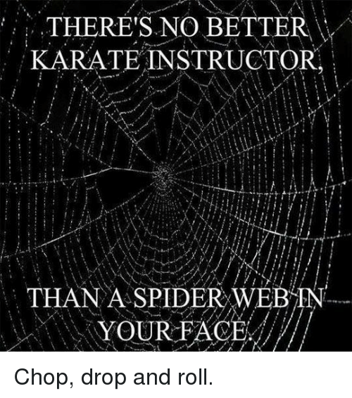 Spider Webbed: THERE'S NO BETTER  KARATE INSTRUCTOR.  THAN A SPIDER WEB TN  YOUR FACE Chop, drop and roll.
