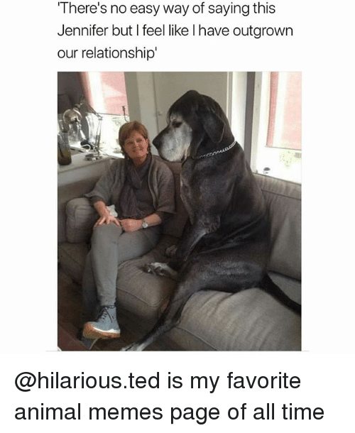Memes, Ted, and Animal: There's no easy way of saying this  Jennifer but I feel like l have outgrown  our relationship' @hilarious.ted is my favorite animal memes page of all time