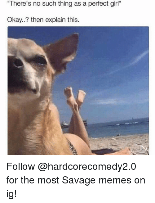 """Memes, Perfect Girl, and 🤖: """"There's no such thing as a perfect girl""""  Okay..? then explain this. Follow @hardcorecomedy2.0 for the most Savage memes on ig!"""
