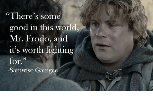 """Memes, Good, and World: """"There's some  good in this world  Mr. Frodo, and  it's worth fighting  for.  29  -Samwise Gamgee"""