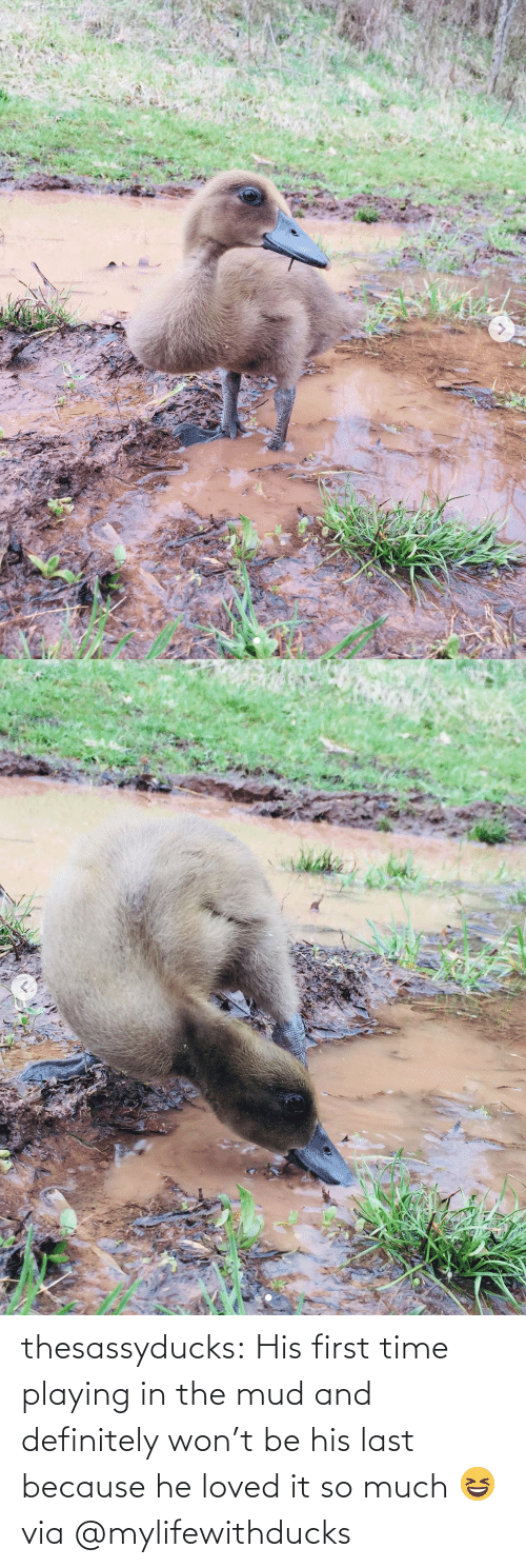 First Time: thesassyducks: His first time playing in the mud and definitely won't be his last because he loved it so much 😆 via @mylifewithducks
