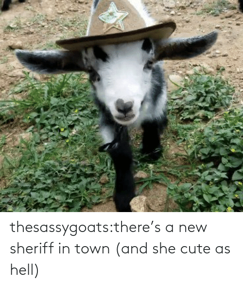Hell: thesassygoats:there's a new sheriff in town (and she cute as hell)