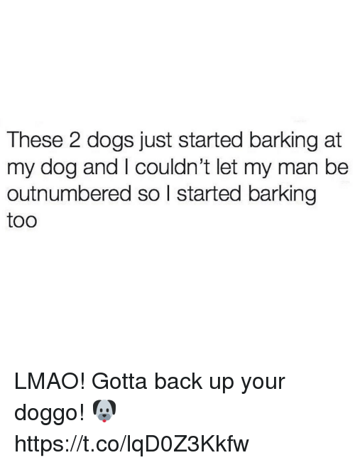 backing up: These 2 dogs just started barking at  my dog and I couldn't let my man be  outnumbered so l started barking  too LMAO! Gotta back up your doggo! 🐶 https://t.co/lqD0Z3Kkfw
