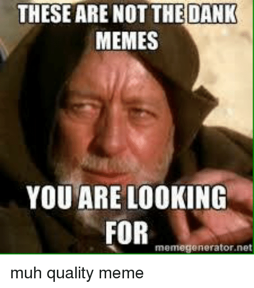 Dank, Meme, and Memes: THESE ARE DANK  MEMES  YOU ARE LOOKING  FOR  meme generator net muh quality meme