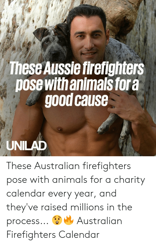 Aussie: These Aussie firefighters  pose with animals fora  good cause  UNILAD These Australian firefighters pose with animals for a charity calendar every year, and they've raised millions in the process...  😲🔥  Australian Firefighters Calendar