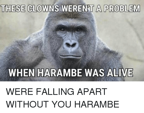 Fall: THESE CLOWNS WERENT A PROBLEM  WHEN HARAMBE WAS ALIVE WERE FALLING APART WITHOUT YOU HARAMBE