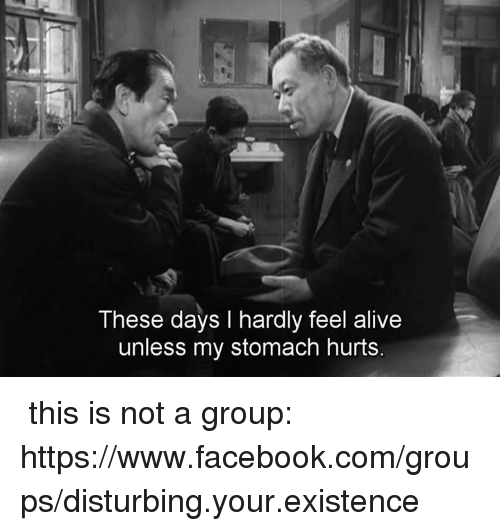 Memes, 🤖, and Https: These days I hardly feel alive  unless my stomach hurts. ✞ this is not a group: https://www.facebook.com/groups/disturbing.your.existence