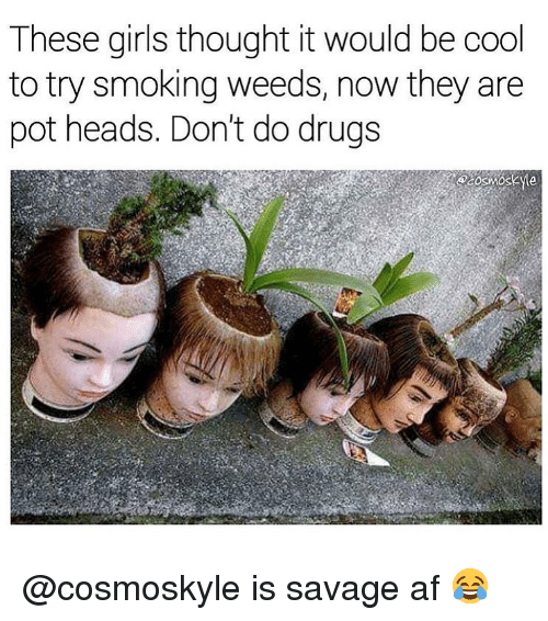 Savage Af: These girls thought it would be cool  to try smoking weeds, now they are  pot heads. Don't do drugs @cosmoskyle is savage af 😂