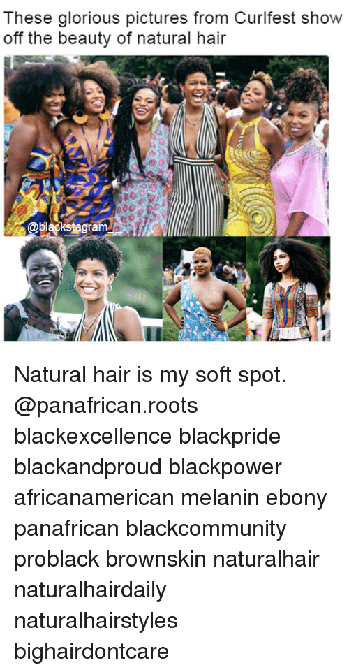 gloriousness: These glorious pictures from Curifest show  off the beauty of natural hair  @blackstagram Natural hair is my soft spot. @panafrican.roots blackexcellence blackpride blackandproud blackpower africanamerican melanin ebony panafrican blackcommunity problack brownskin naturalhair naturalhairdaily naturalhairstyles bighairdontcare