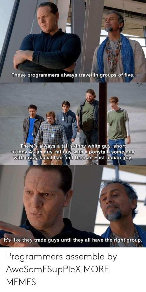 white guy: These programmers always travel in groups of five.  There's always a tall skinny white guy, short  skinny Asian guy, fat guy with a ponytail, some guy  with crazy facial hair and then an East Indian guy.  It's like they trade guys until they all have the right group. Programmers assemble by AweSomESupPleX MORE MEMES