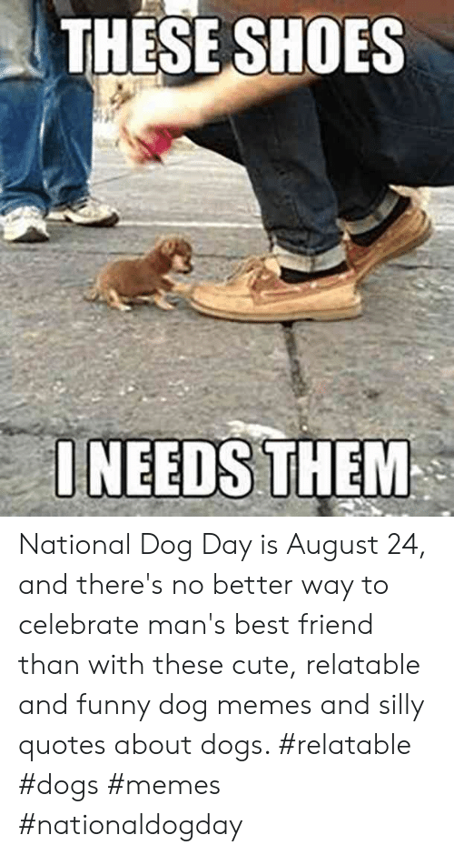 Silly Quotes: THESE SHOES  ONEEDS THEM National Dog Day is August 24, and there's no better way to celebrate man's best friend than with these cute, relatable and funny dog memes and silly quotes about dogs.  #relatable #dogs #memes #nationaldogday