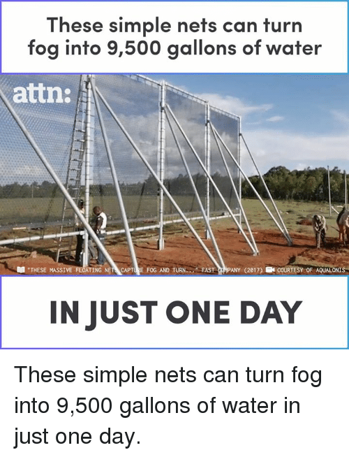 """Nets: These simple nets can turn  fog into 9,500 gallons of water  attn:  """"THESE MASSI  TING NET CAPTURE FOG AND TURN FAST CRMPANY (2017) ECOURTESY OF AQUALONIS  IN JUST ONE DAY These simple nets can turn fog into 9,500 gallons of water in just one day."""