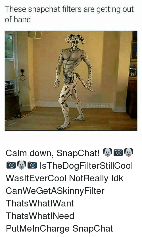 Memes, Snapchat, and 🤖: These snapchat filters are getting out  of hand  @chaos reigns Calm down, SnapChat! 🐶📷🐶📷🐶📷 IsTheDogFilterStillCool WasItEverCool NotReally Idk CanWeGetASkinnyFilter ThatsWhatIWant ThatsWhatINeed PutMeInCharge SnapChat