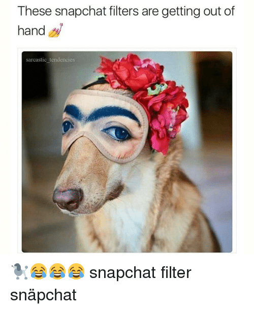 Memes, 🤖, and Filter: These snapchat filters are getting out of  hand  sarcastic tendencies 🐩😂😂😂 snapchat filter snäpchat