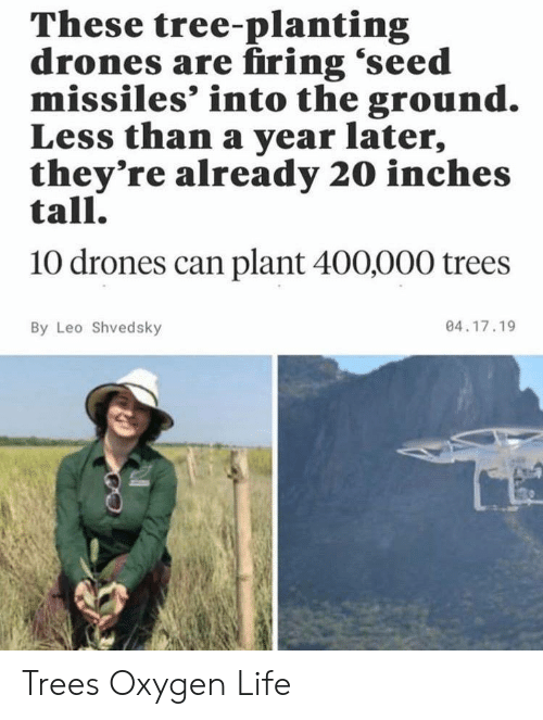 Firing: These tree-planting  drones are firing 'seed  missiles' into the ground.  Less than a year later,  they're already 20 inches  tall.  10 drones can plant 400,000 trees  04.17.19  By Leo Shvedsky Trees Oxygen Life