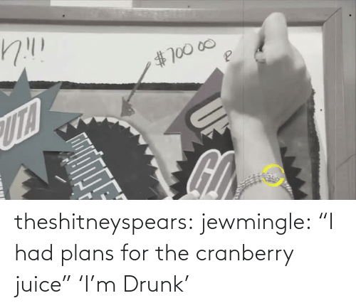"Drunk: theshitneyspears:  jewmingle:  ""I had plans for the cranberry juice""  'I'm Drunk'"