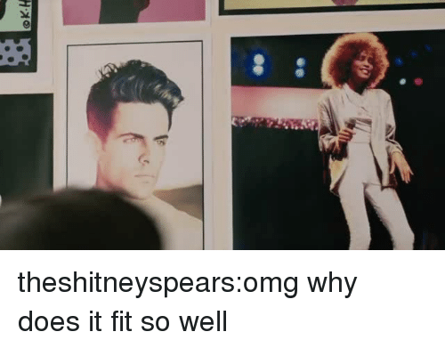 Omg Why: theshitneyspears:omg why does it fit so well