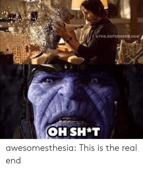Sh T: THESUPERHERO.HUB  OH SH*T awesomesthesia:  This is the real end
