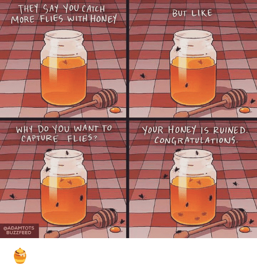Memes, Buzzfeed, and Congratulations: THEt SAY YOU CATCH  BUT LIKE  MORE FLIES WITH HONEY  WHY DO you WANT TO  YOUR HONEY IS RUINED  CAPTURE FLIES?  CONGRATULATIONS.  @ADAMTOTS  BUZZFEED 🍯