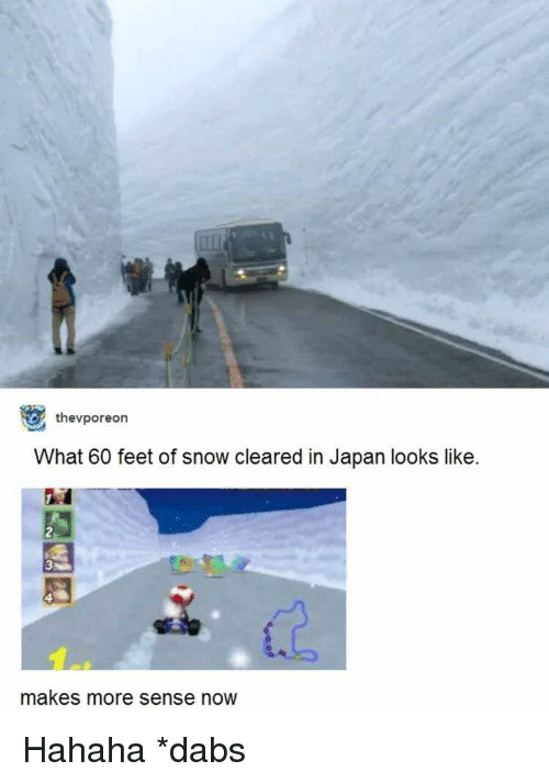 The dab: thevporeon  What 60 feet of snow cleared in Japan looks like.  makes more sense now Hahaha *dabs