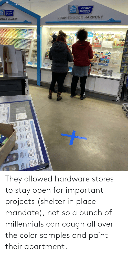 mandate: They allowed hardware stores to stay open for important projects (shelter in place mandate), not so a bunch of millennials can cough all over the color samples and paint their apartment.
