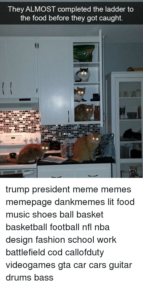 Memes, Music, and Design: They ALMOST completed the ladder to  the food before they got caught. trump president meme memes memepage dankmemes lit food music shoes ball basket basketball football nfl nba design fashion school work battlefield cod callofduty videogames gta car cars guitar drums bass