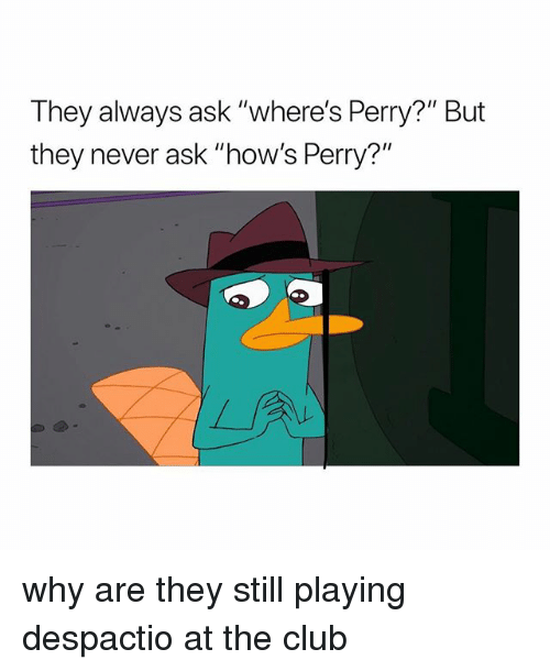 """Club, Girl Memes, and Never: They always ask """"where's Perry?"""" But  they never ask """"how's Perry?'"""" why are they still playing despactio at the club"""