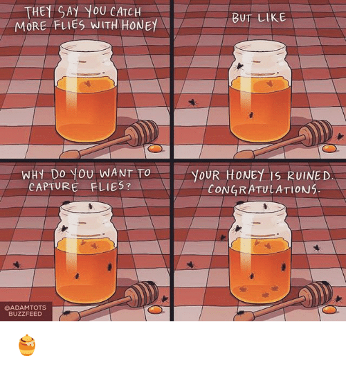 Memes, Buzzfeed, and Congratulations: THEY AY YOU CATCH  BUT LIKE  MORE FLIES WITH HONE  WHY Do YOU WANT TO  YOUR HONEY IS RUINED  CAPTURE FLIES?  CONGRATULATIONS  GADAMTOTS  BUZZFEED 🍯