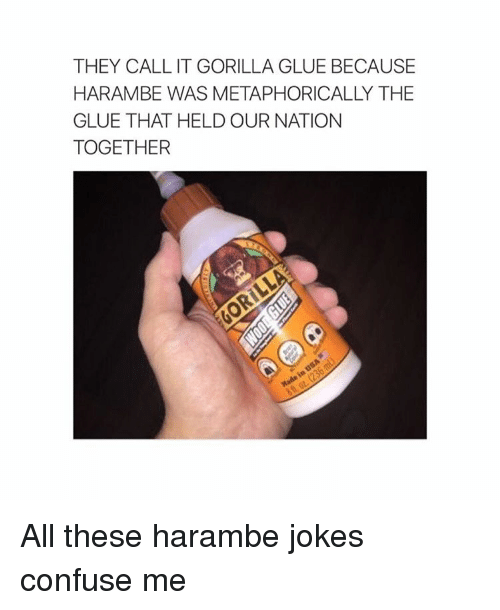Confused, Jokes, and Metaphor: THEY CALL IT GORILLA GLUE BECAUSE  HARAMBE WAS METAPHORICALLY THE  GLUE THAT HELD OUR NATION  TOGETHER All these harambe jokes confuse me