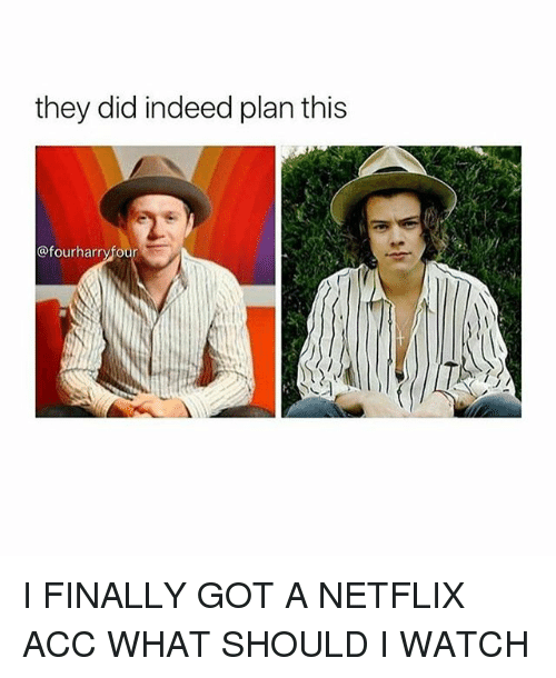 Memes, Netflix, and Indeed: they did indeed plan this  @fourharryfour I FINALLY GOT A NETFLIX ACC WHAT SHOULD I WATCH