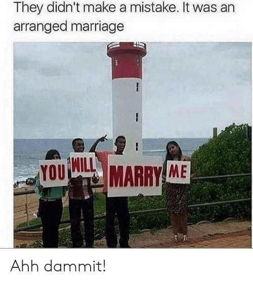Arranged Marriage: They didn't make a mistake. It was an  arranged marriage  YOU  MARRY ME Ahh dammit!