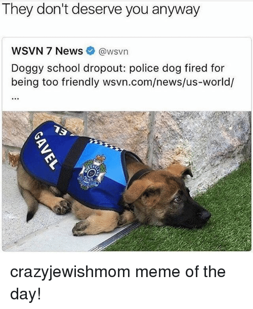 Meme, News, and Police: They don't deserve you anyway  WSVN 7 News @wsvn  Doggy school dropout: police dog fired for  being too friendly wsvn.com/news/us-world/ crazyjewishmom meme of the day!