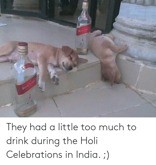 holi: They had a little too much to drink during the Holi Celebrations in India. ;)